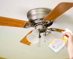 cleaning a ceiling fan
